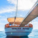 White Rose - a Gulet