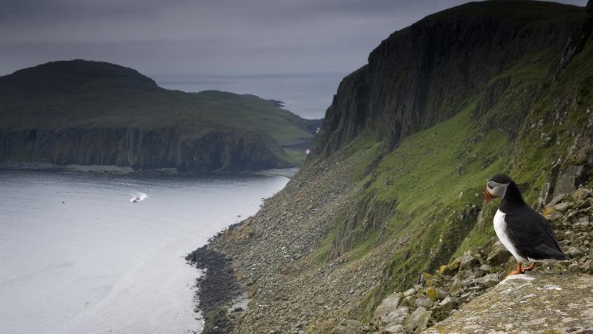 Enchanted Isle - a Redbay Stormforce 1650